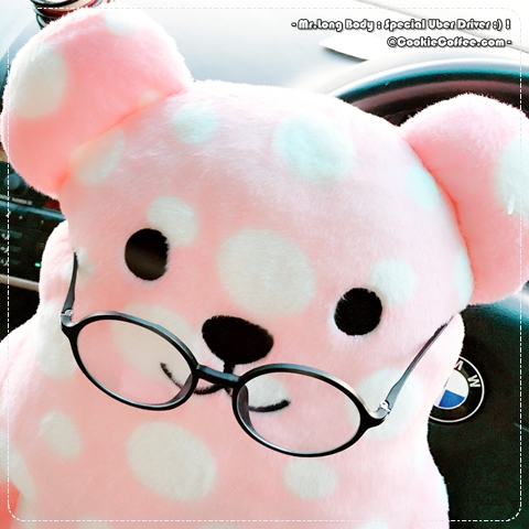 mr-long-body-cute-pink-doll-glasses-bmw-uber-driver-cookiecoffee-bear-cat