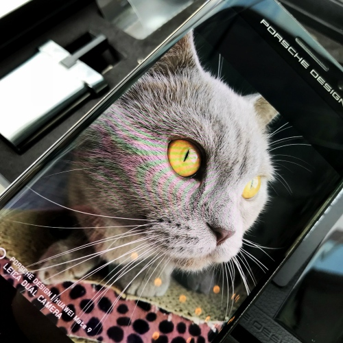 porsche-design-mate-9-huawei-review-user-no-sponsor-british-shorthair-cat-camera-leica
