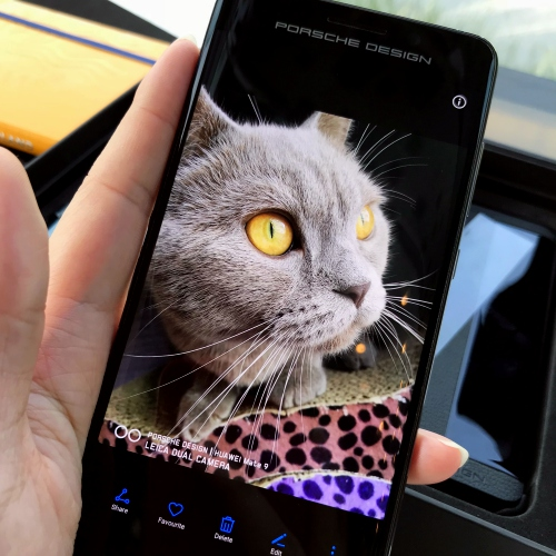 porsche-design-mate-9-huawei-review-user-no-sponsor-camera-leica-cat-cute