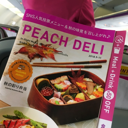 peach-airlines-review-japan-okinawa-lcc-menu-meal-autumn-bento