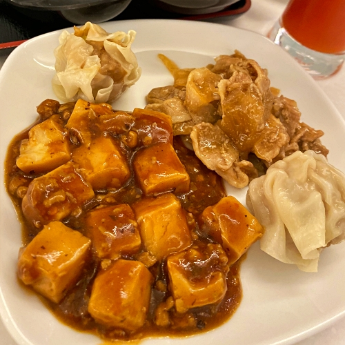 ana-business-class-staggered-review-iphone-11-pro-787-9-tokyo-haneda-lounge-buffet-mabo-curry