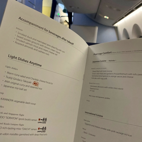 ana-business-class-staggered-review-iphone-11-pro-787-9-tokyo-haneda-menu-meal
